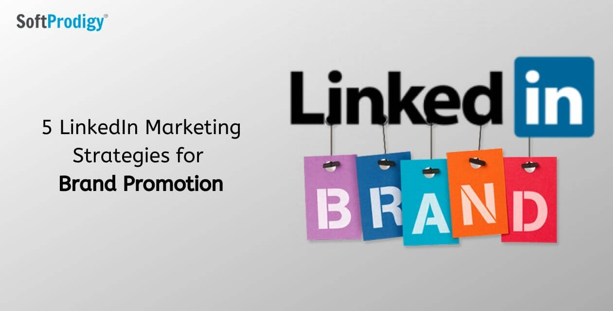 LinkedIn Marketing Strategies By SoftProdigy